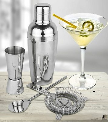 Top 10 Best Cocktail Shaker Set of 2017 Reviews
