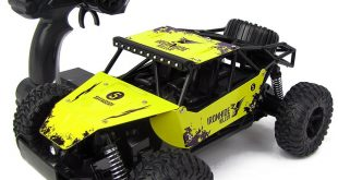 Top 5 Best RC Cars